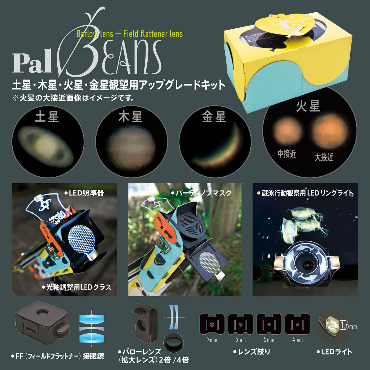 palbeans_PR03.jpg